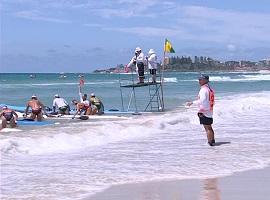 Le travail du juge sur une compétition de surf